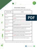 Articles-26583 Recurso Pauta Docx