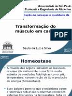 Transformação Do Músculo Em Carne