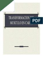 TRANSFORMACION DEL MUSCULO EN CARNE.pdf