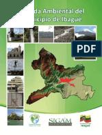 2010 Agenda Ambiental Del Municipio de Ibague 2010 Completa