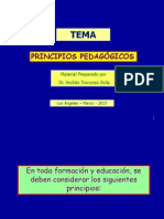 Power_N°_1___Principios__Pedagogicos
