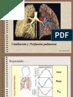 2013 - 14 - Sist Respiratorio