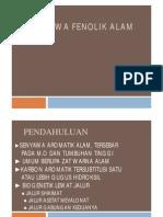 Senyawa Fenolik Alam [Compatibility Mode]