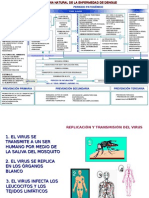 127501323 Historia Natural de La Enfermedad Dengue