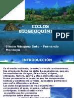 Ciclos Biogeoqu Micos-1