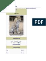 Panthera Pardusn