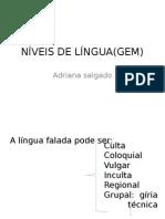 Niveis de Lingua Gem