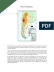 Sismos en la Argentina