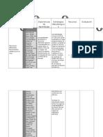 Cuadro Micro Planificación