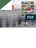 Agenda Morelos