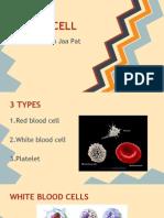 neutrophils presentation