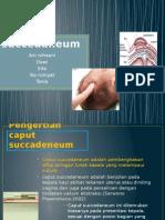 ppt maternitas capus succadenum