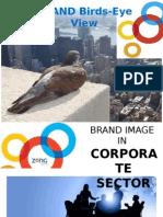 ZONG's Birds-Eye View