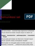 pertemuaniv-komunikasi-sel.ppt