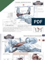ejercicios_de_fisicoculturismo_2.ppt