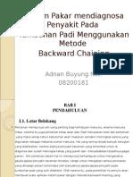 Seminar Sistem Pakar Padi