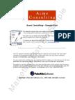 Acme Marketing Plan