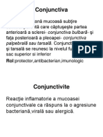 curs 3 Conjunctiva-text.pdf