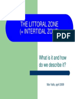 The Littoral Zone