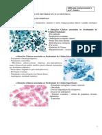 citologia_clinica_4ano_sandra01.pdf