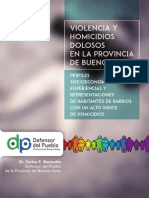 Investigacion Violencia y Homocidios Dolosos PBA