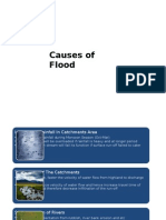 SY_Causes and Effects of Flood