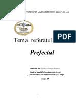 Prefectul, Referat Intocmit
