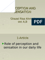 Perception and Sensation