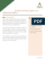 Adaptra Whitepaper Agile