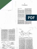 Ecologia_Formato Original.pdf