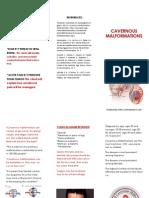 evidenced based brochure