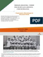 Organização e Metodologia da Educação Infantil scrib.ppt