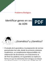 Bioinformatica 2014 ORF