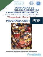 Svdmqe Programa Final Estetica 2015 (1)