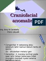 Craniofacial anomalies-drg Amy.ppt