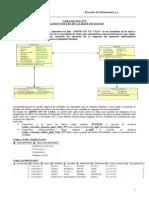 Guia SQL Creacion Vistas Base Datos