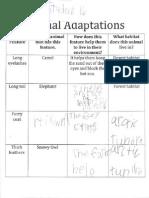 student 16 lesson 7 adapt