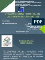 GERENCIA DEPORTIVA MODIFICADAS