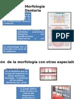 Endodoncia.pptx