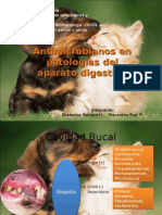 patologias_del_sistema_digestivo.ppt