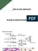 15. Hematopoiesis