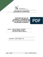 EXATRACCION Y OPTIMIZACION DEL ORO UTILIZANDO CIANURO
