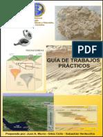 Guia de Trabajos Practicos Topografia