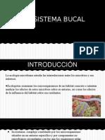 Ecologia periodontal