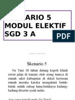Skenario 5 elektif