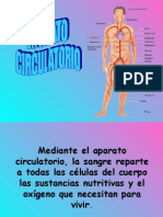 aparato-circulatorio-26157
