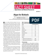 Algae for biofuels.pdf
