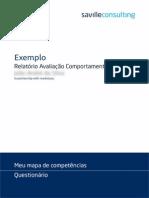 Modelo Relatório DISC