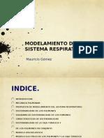 Modelamiento de Sistema Respiratorio3