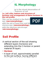 Soil Morphology